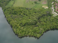 Aerial view of wooded Frautschi Point with Lake Mendota shoreline.