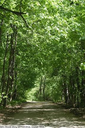 Bill S Woods Lakeshore Nature Preserve Uw Madison