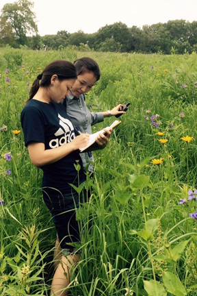 Two students--one holding a clipboard and one holding a camera--documenting pollinators in Biocore Prairie.