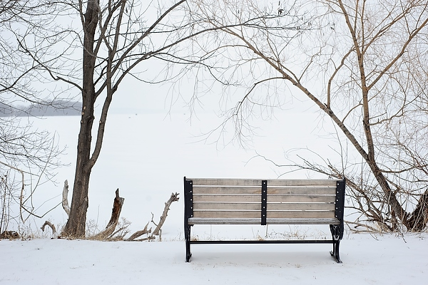 A view of snow-covered Lake Mendota is framed by bare tree branches and a bench located along the Howard Temin Lakeshore Path at the University of Wisconsin-Madison during winter on Jan. 13, 2011.