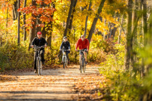 Visitors ride their bicycles on the colorful tree-lined Howard Temin Lakeshore Path during fall at the University of Wisconsin-Madison on Nov. 4, 2016. (Photo by Bryce Richter / UW-Madison)