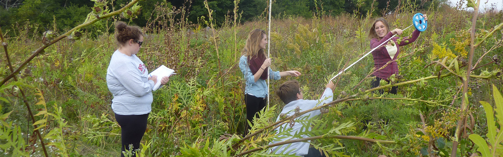 Four students taking measurements in Biocore Prairie.